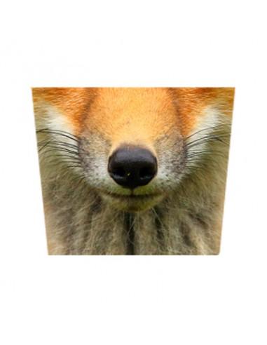 Masque tissu renard