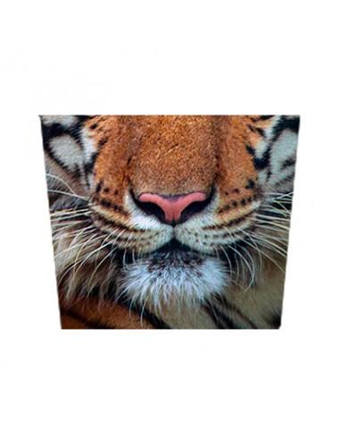 Masque tissu Tigre