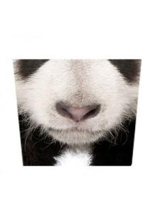 Masque tissu Panda