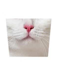 Masque tissu Chat